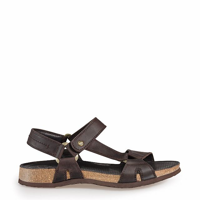 Men's sandal FRODO BASICS brown | PANAMA JACK® Official