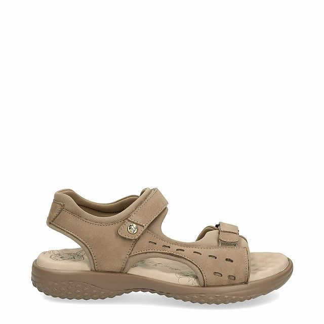 Leather sandal in taupe with Lycra inner lining