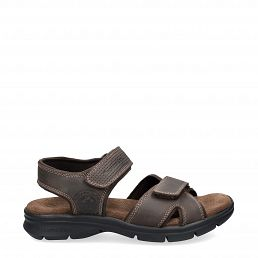 Panama Jack Sanders Basics Brown Napa Grass Man Footwear